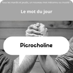 picrocholine définition