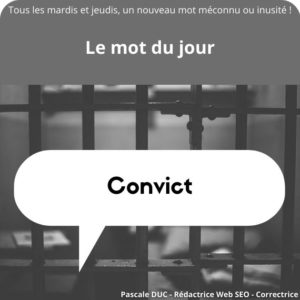 convict définition