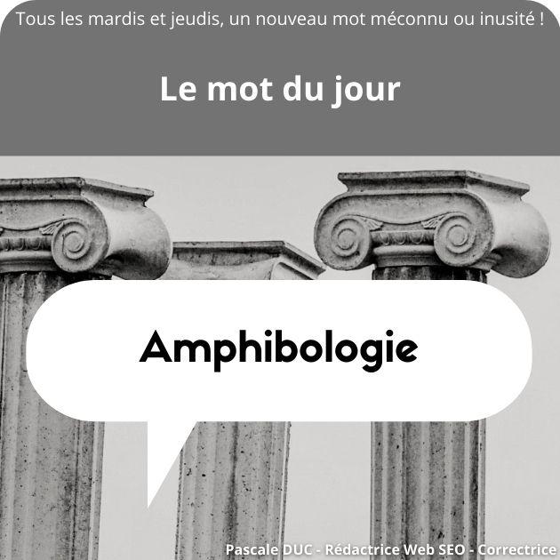 amphibologie définition
