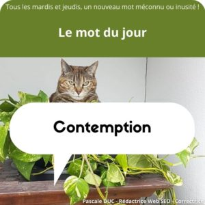 contemption définition